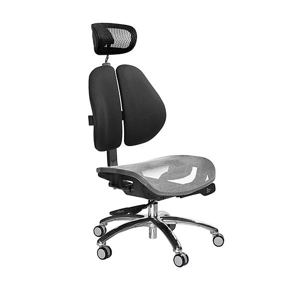 GXG 高雙背網座 工學椅 鋁腳無扶手 TW-2806 LUANH