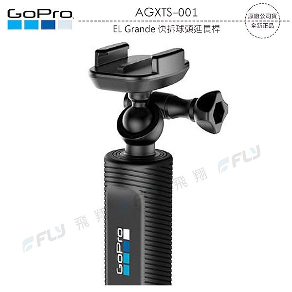 《飛翔3C》GoPro AGXTS-001 EL Grande 快拆球頭延長桿〔公司貨〕伸縮固定座 自拍手持桿