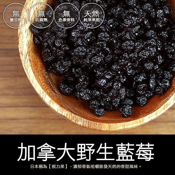 【屏聚美食】加拿大野生藍莓(250±5克)