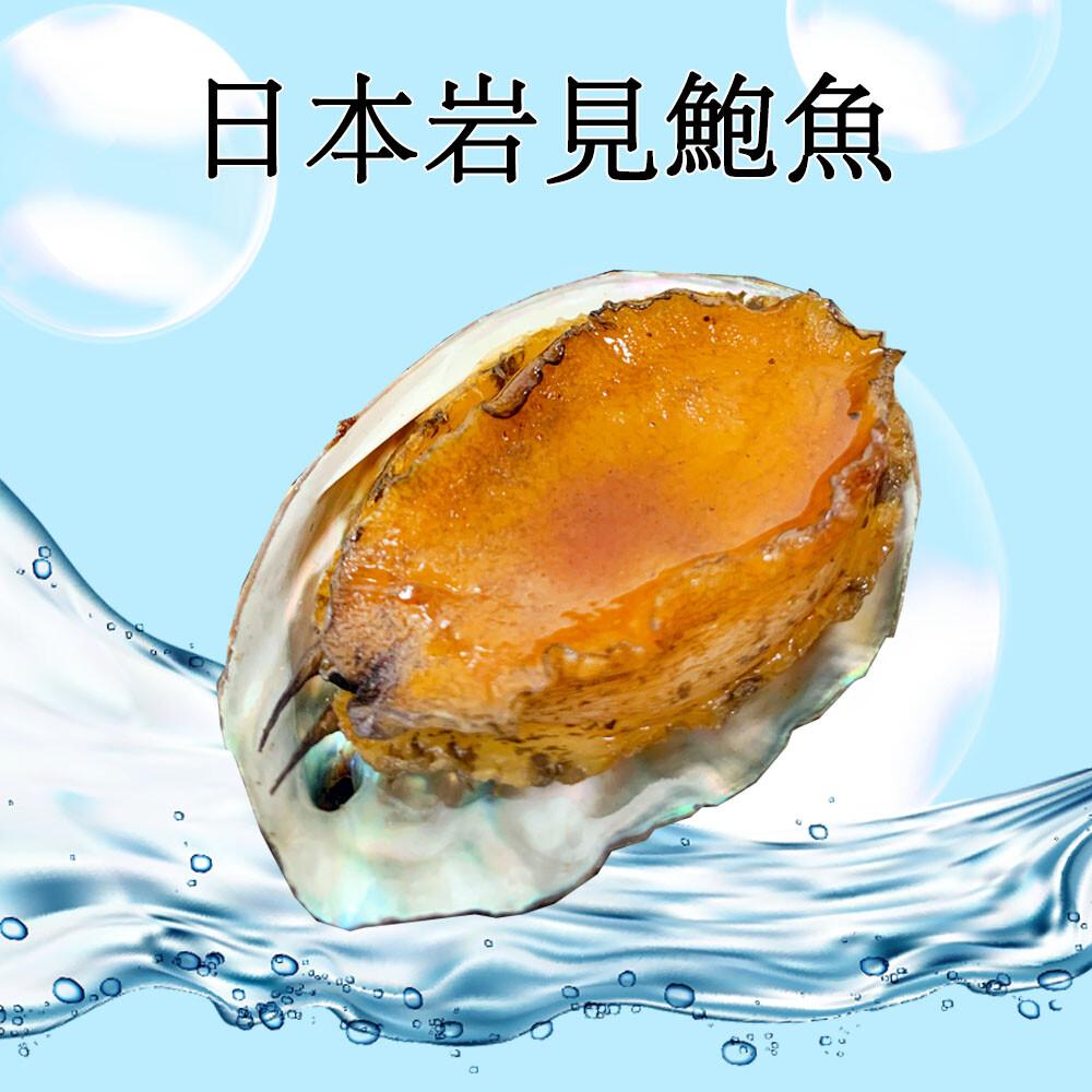 realshop 真食材本舖日本岩見鮑魚 1kg/約24顆
