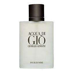 Giorgio Armani Acqua di Gio 亞曼尼寄情水男性淡香水 100ml TESTER【七三七香水精品坊】