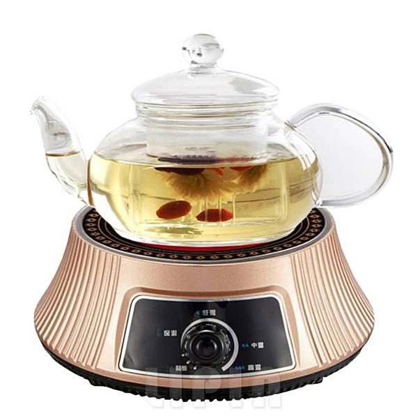 Delan德朗牌黑晶不挑鍋電陶爐 耐熱高硼硅玻璃茶壺組 DEL-9900