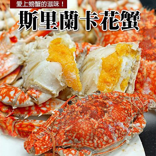 【屏聚美食】斯里蘭卡母花蟹(200~250g/隻)