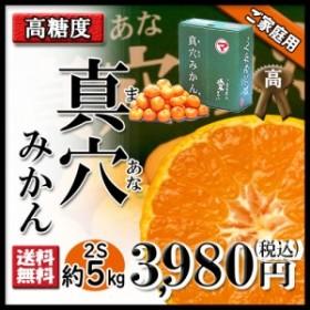 みかん 真穴みかん  家庭用 お歳暮 真穴 極旨です 甘いみかん ご希望の方に 2S~S 約5kg 送料無料