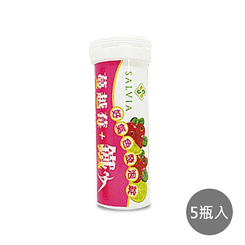 【SALVIA】莎菲亞蔓越莓+鐵好氣色發泡錠x5瓶