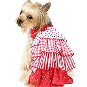 【PET PARADISE 寵物精品】Pretty Boutique 紅色點點蛋糕裙(4S/3S/DSS)狗衣服 寵物用品 寵物衣服