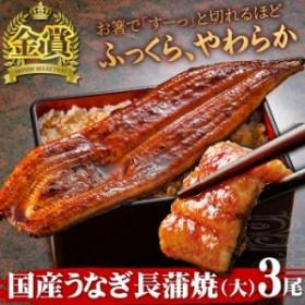 国産うなぎ長蒲焼(大)3尾 送料無料 うなぎ ウナギ 鰻