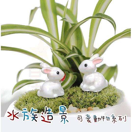 星星小舖 台灣出貨 水族造景 魚缸造景 水族擺飾 兔子 龍貓 擺件 擺飾 景觀 魚缸擺件 水族