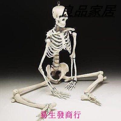 【易生發商行】85CM 人體骨骼模型85cm 骨架模型 骷髏模型 可擺姿勢骨架人F6426