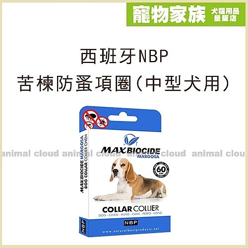 寵物家族-西班牙NBP苦楝防蚤項圈(中型犬用)