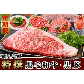 定期便 鹿児島産A5等級黒毛和牛&黒豚(3回配送)