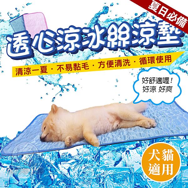 【M號】透心涼冰絲涼墊 寵物冰絲墊 狗墊 貓墊 夏天涼墊 散熱 降溫 貓冰絲墊 狗冰絲墊 涼感墊