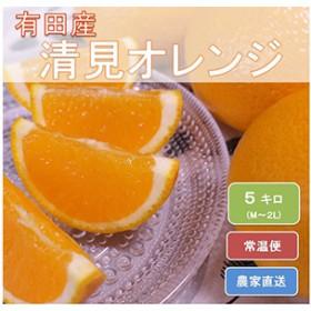 和歌山県有田産 完熟清見オレンジ ひとつひとつ丁寧に厳選!生産者から直送 【ひだまりみかん家】