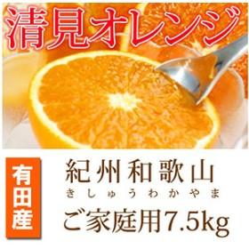 とにかくジューシー清見オレンジ 5kg 【魚鶴商店】