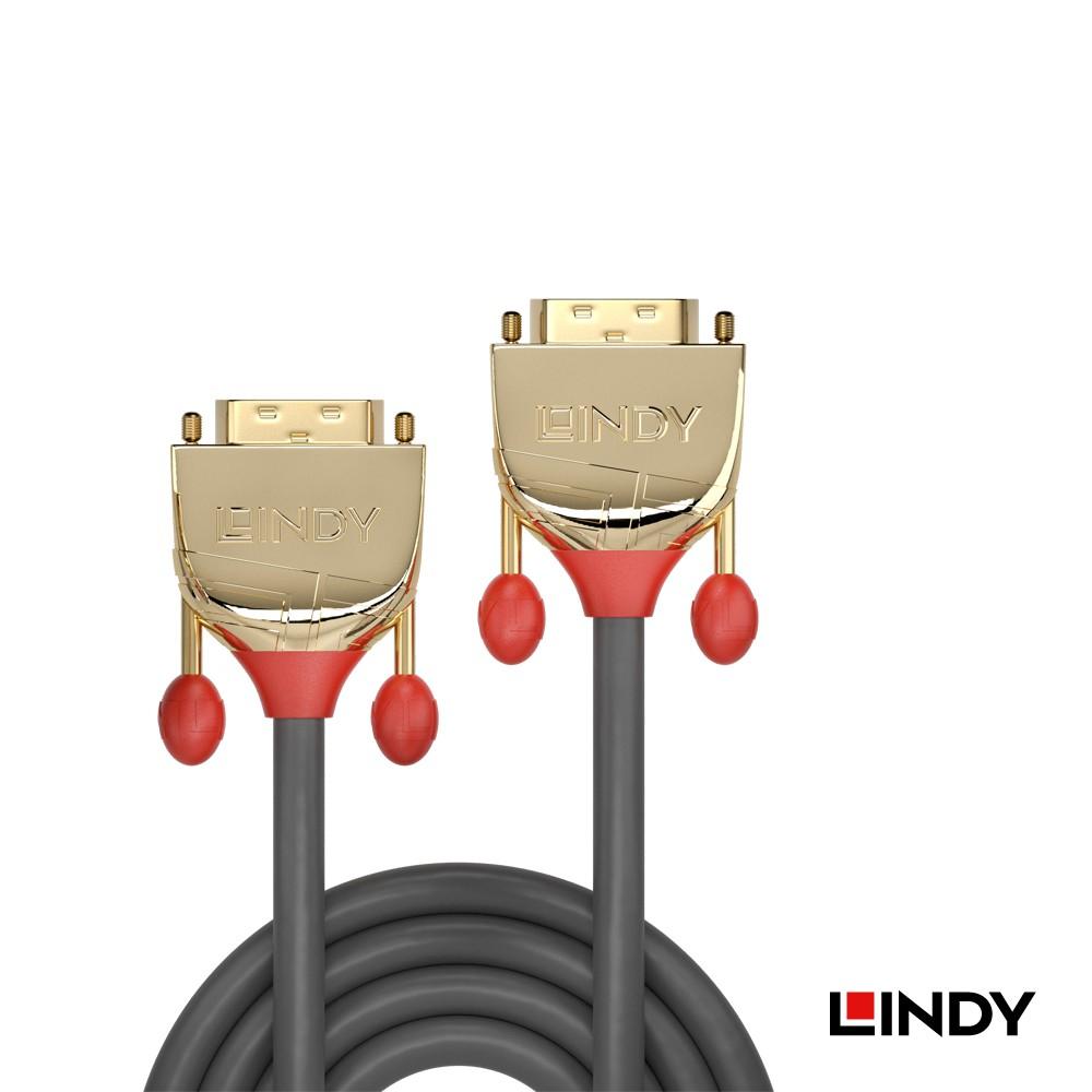 LINDY 林帝 GOLD LINE DVI-D雙鍊結 公 TO 公 傳輸線 20M 36208 大洋國際電子