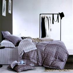 幸運草 灰諧 100%嫩柔天絲雙人四件式兩用被床包組-獨立筒適用