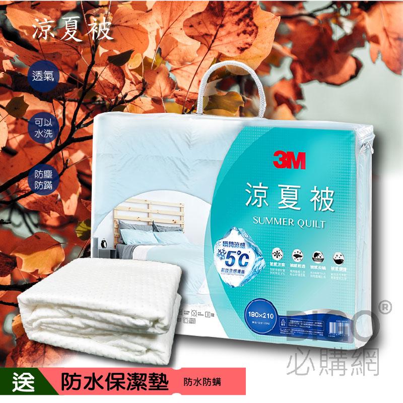 【送防水保潔墊】3M涼夏被SZ80 標準雙人 送保潔墊 床墊 防螨 棉被 被子 涼被 透氣 居家用品 瞬間涼感 可水洗