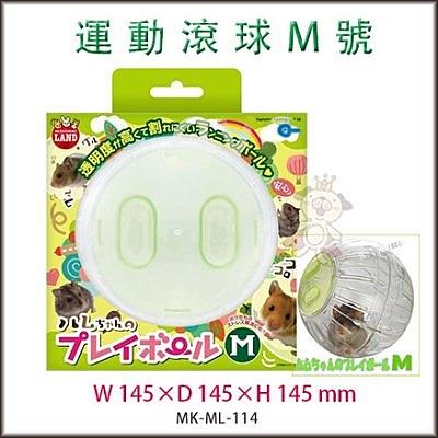 『寵喵樂旗艦店』日本Marukan 鼠鼠跑跑 運動球 透明滾球 M號 【ML-114】