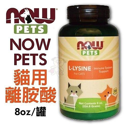 『寵喵樂旗艦店』NOW PETS 貓用離胺酸 8oz (226.8g) 貓咪營養品 必需氨基酸