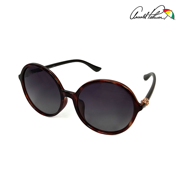 [現貨] Arnold Palmer雨傘 偏光太陽眼鏡 11708-C041