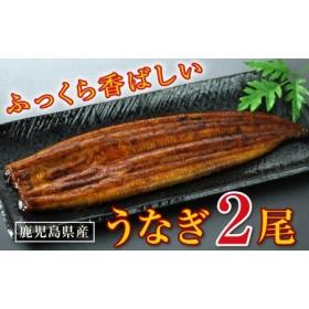 【3回定期】特上うなぎ150g×2尾