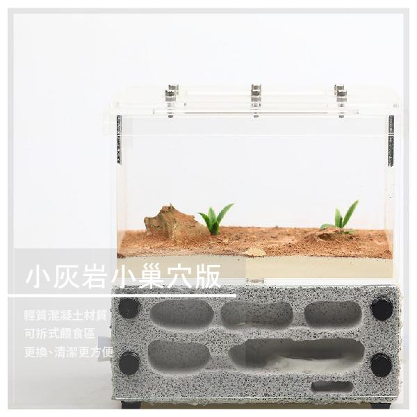 【螞蟻帝國】小灰岩小巢穴版 輕質混凝土