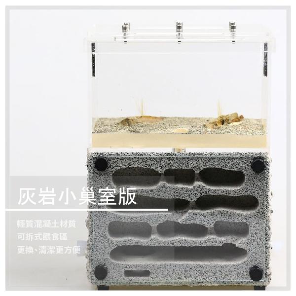 【螞蟻帝國】灰岩小巢室版 輕質混凝土