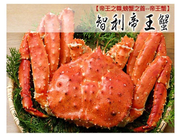 【築地一番鮮】比臉大急凍智利帝王蟹1隻(1-1.2kg/隻) -免運組