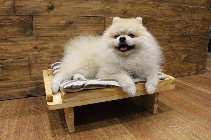 原木無釘寵物床 貓抓床 貓抓板 多功能床