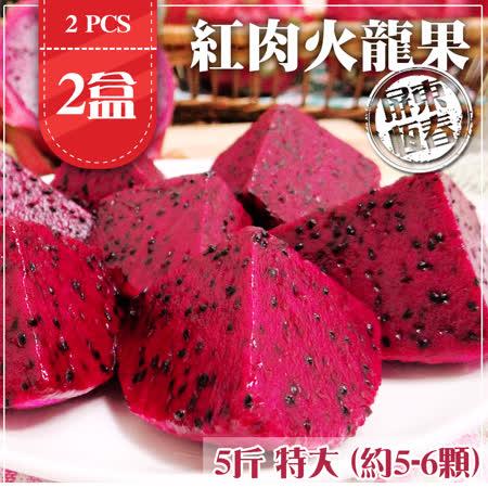 【家購網嚴選】屏東紅肉火龍果 5斤/盒X2盒 特大(約5-6顆/盒)
