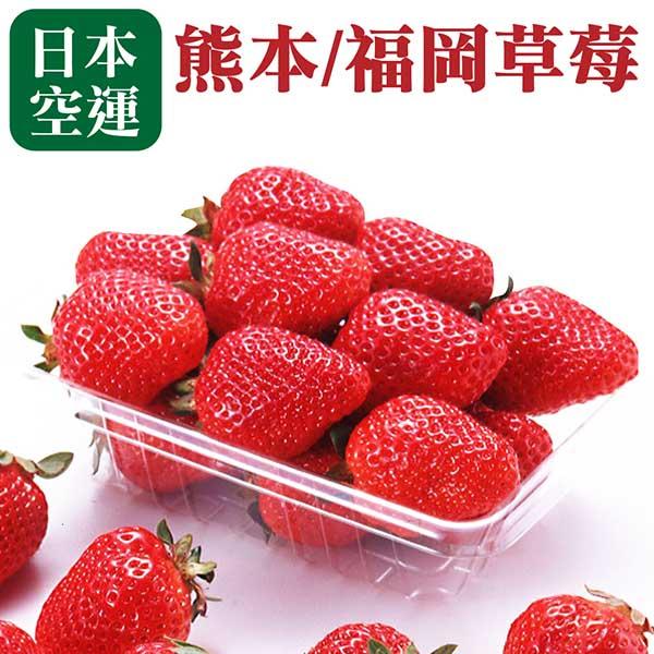 【WANG 蔬果】日本嚴選福岡/熊本草莓(1盒/約270g±10%)