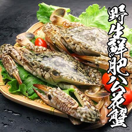 【海鮮王】野生鮮肥公花蟹 5隻組(250g±10%/隻)