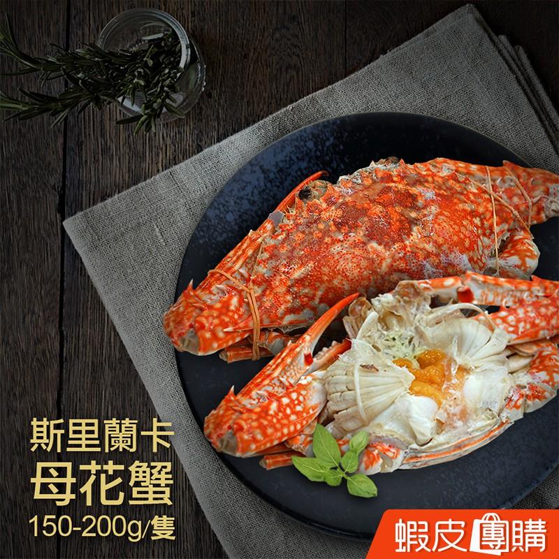 【築地一番鮮】斯里蘭卡母花蟹(150~200g/隻)-蝦皮團購免運