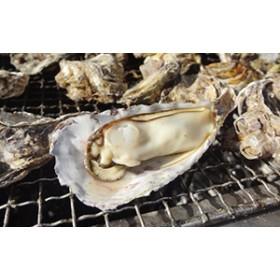 【期間限定】寄島産の牡蠣(殻付)3kg