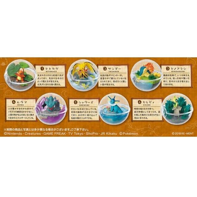 ポケットモンスター テラリウムコレクション3 6個入りBOX (食玩)[リーメント]《発売済・在庫品》