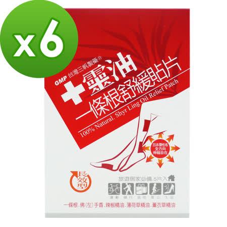【十靈本舖】一條根舒緩貼片-長效型熱感貼片 (5片/盒) 6盒組