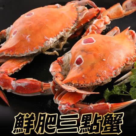 【海鮮王】精選鮮肥三點蟹 *6隻組(淨重100-150g/隻)