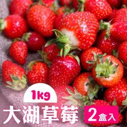 家購網嚴選-鮮豔欲滴大湖香水草莓1公斤/盒x2盒(2~3號果)