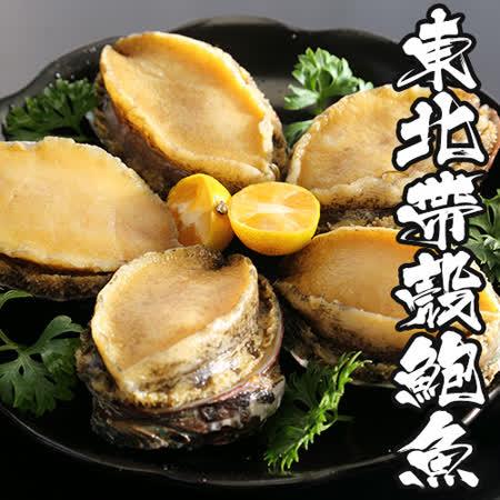 【海鮮王】東北帶殼鮮鮑魚12包組( 240g±10%/包)( 6顆/包)