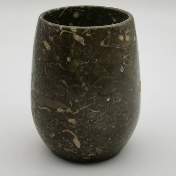限量 台灣貝殼化石 (1)五百萬年前的海王類 象牙貝屬軟體動物門掘足綱的貝類,形態像一根彎曲的象牙,管狀,橫切面就如同小圈圈一般相當好玩。杯子中除了象牙貝化石外還有幾顆單體珊瑚化石九層螺化石點綴其間非