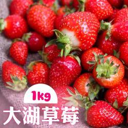 家購網嚴選-鮮豔欲滴大湖香水草莓1公斤/盒(2~3號果)