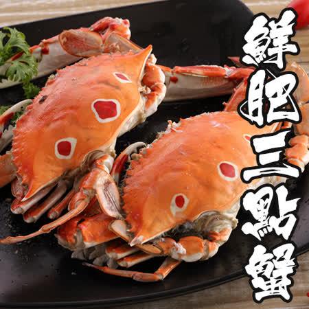 【海鮮王】精選鮮凍三點蟹40隻組(淨重100-150g/隻)