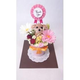 お花で作ったワンちゃん「ちいさな友だち ~プードル茶~ 」カラー陶器アレンジ