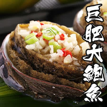 【海鮮王】巨肥鮮美大鮑魚 *2包組(800g/10顆/包)