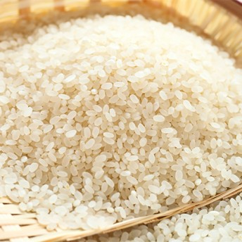 令和1年産伊賀米コシヒカリ8kg(3kg+5kg)(コシヒカリ3kg×1袋 コシヒカリ5kg×1袋)