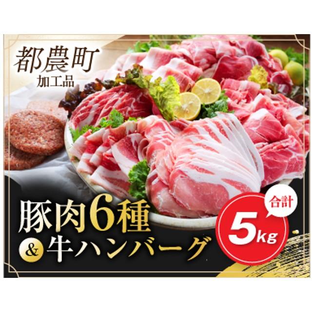 豚肉6種&牛ハンバーグセット(合計5kg)都農町加工品