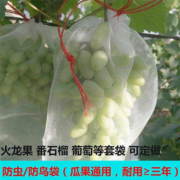 尼龍網袋火龍果套袋專用套果袋葡萄套袋水果套袋防果蠅防蟲防鳥袋 城市科技DF