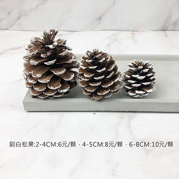 BEAGLE 刷白4-5公分 乾燥花 松果 單顆 松塔 素材 不凋花 人造花 乾燥花束 花藝設計 攝影佈景