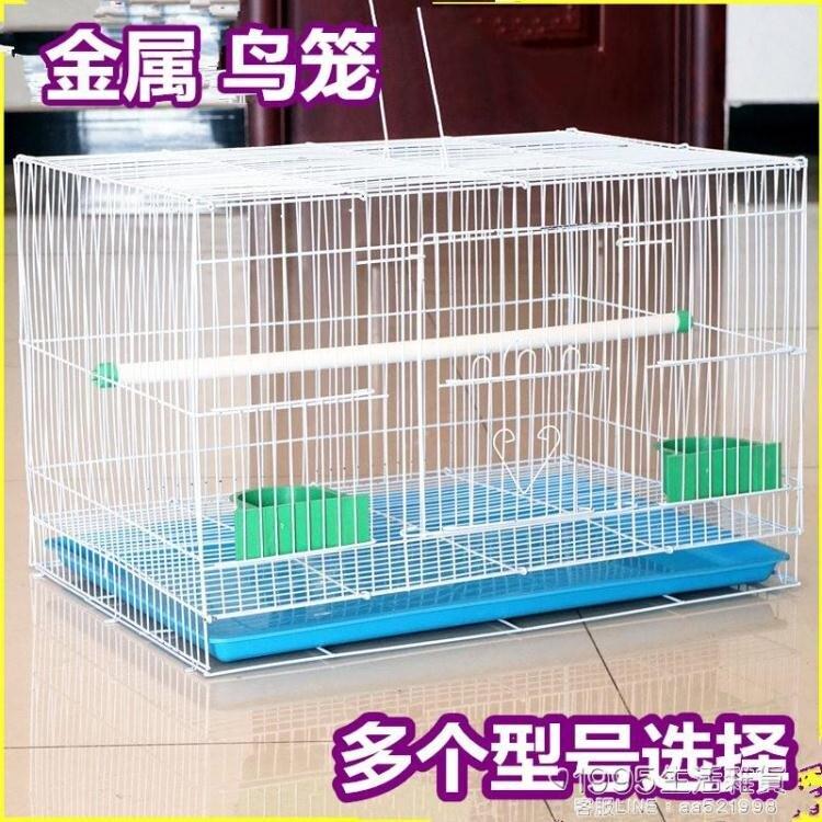鳥籠金屬鳥籠鴿子相思鳥籠子鸚鵡籠兔子籠通用鳥籠群籠繁殖籠 【交換禮物】