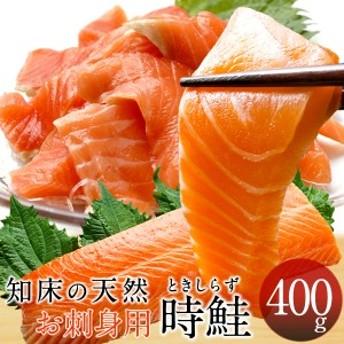 トキシラズ 時鮭 刺身用 [ブロック・400g] 時不知 ときしらず サーモン 北海道 知床産 産直